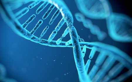 Breaking News: Microsoft's Planning on Storing Data on DNA
