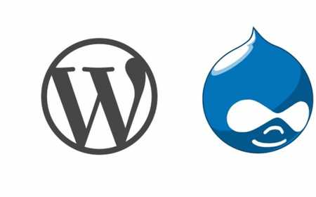 Drupal or Wordpress? Depends on The Type of site You Will Build!