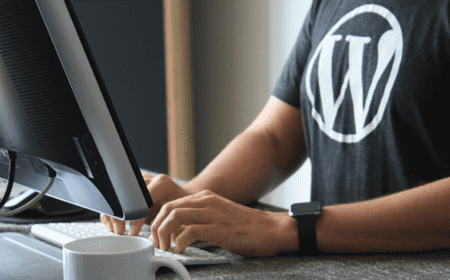 Why Is WordPress so Popular? What Makes It More Popular than... Drupal? 3 Main Reasons